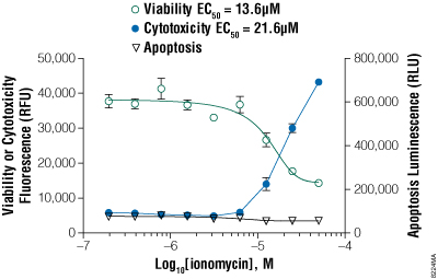 ApoTox-Glo Triplex Assay with suspension K562 cells treated with ionomycin