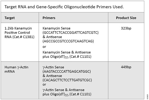 Target RNA and Gene-Specific Oligonucleotide Primers Used.
